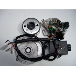image: Lifan outer rotor ignition compleet