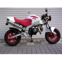 image: Mizumoto Monkey R exhaust