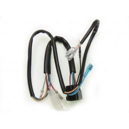 image: Daytona 150 wiring harness